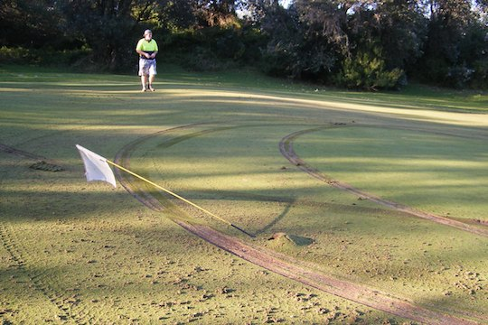 Vandalised green at Lakes Entrance Golf Club in Victoria