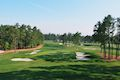 Luke Elvy: The Contradiction at Pinehurst