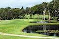 Port Macquarie: A Golfer's Paradise
